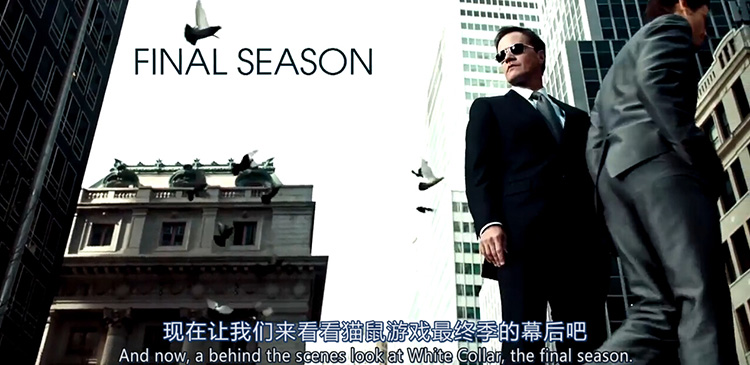 White Collar Season 6 Interview